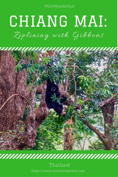 Chiang Mai Ziplining - Flight of the Gibbon | Thailand | Travel Inspiration | MichWanderlust