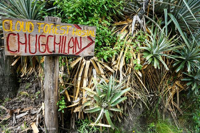 On the road from Isinlivi to Chugchilan | Quilotoa Loop | Hiking | Ecuador | MichWanderlust