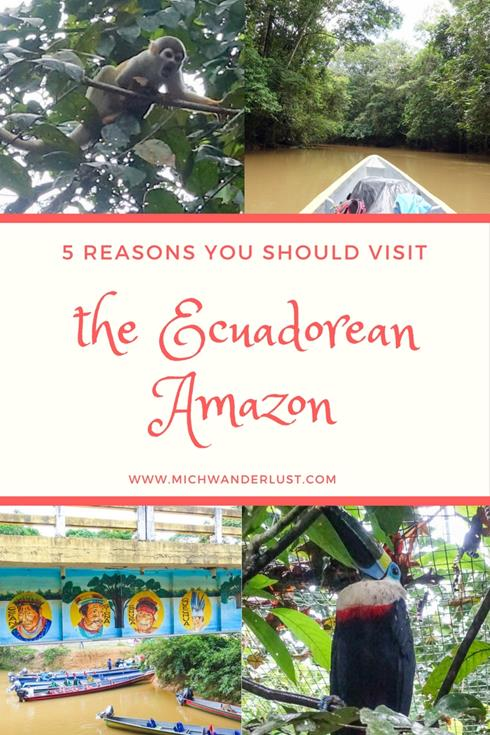 5 compelling reasons to visit the Ecuadorean Amazon sooner rather than later | 5 reasons you should visit the Ecuadorean Amazon | Ecuador | Travel | MichWanderlust