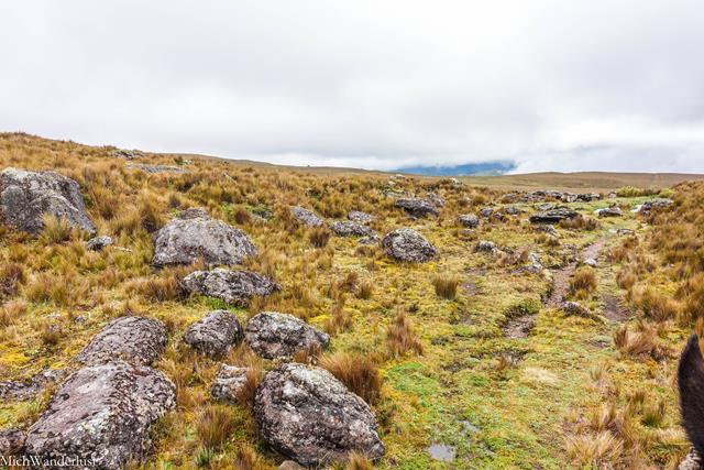 Camino del Inca, Inca Trail to Ingapirca, Ecuador